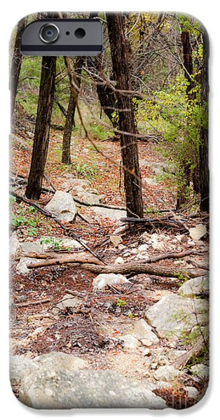 Walk in the Woods iPhone Case by Barbara Shallue