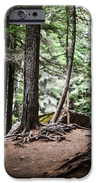Tree Roots Photographs iPhone Cases - Walk With Me iPhone Case by Aaron Aldrich