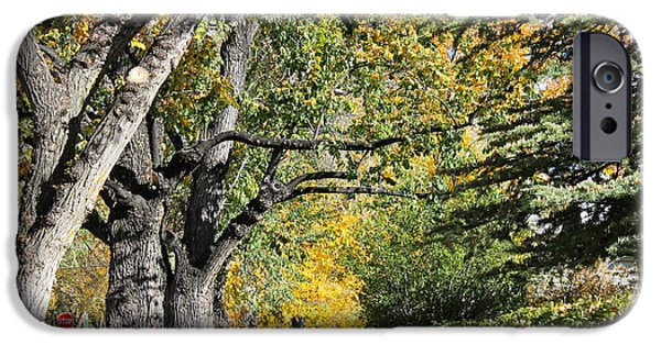 Prescott iPhone Cases - Walking down Senators Highway iPhone Case by Pamela Walrath