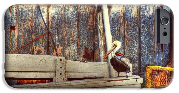 Crabbing iPhone Cases - Walking the Plank iPhone Case by Benanne Stiens