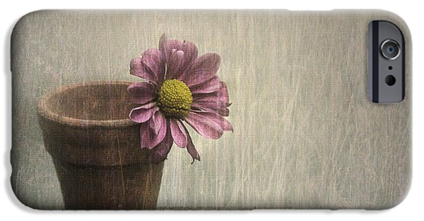 Flowerpot iPhone Cases - Wallflower iPhone Case by Jennifer Woodward