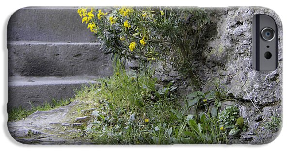 Historic Site iPhone Cases - Wallflowers at Marksburg Castle iPhone Case by Teresa Mucha