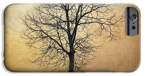 Poetic iPhone Cases - Waltz of a tree iPhone Case by Taylan Soyturk