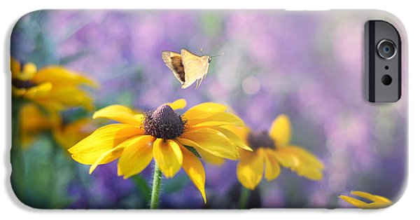Extra Large Print Photographs iPhone Cases - Wanderlust iPhone Case by Amy Tyler