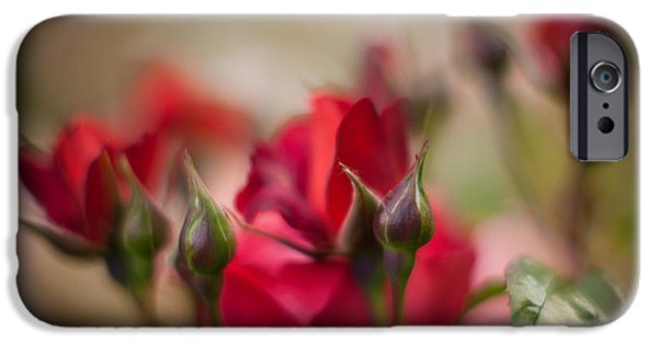 Poetic Photographs iPhone Cases - War of the Roses iPhone Case by Mike Reid