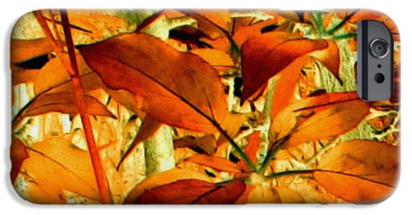 Abstract Digital Drawings iPhone Cases - Warm Beauty iPhone Case by TLynn Brentnall