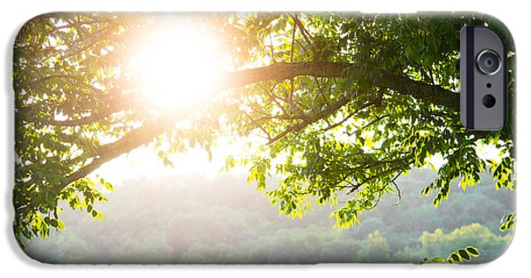 Overhang Photographs iPhone Cases - Summer Haze iPhone Case by Shelby  Young