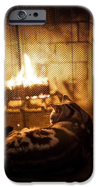 American Shorthair iPhone Cases - Warm Kitty iPhone Case by April Reppucci
