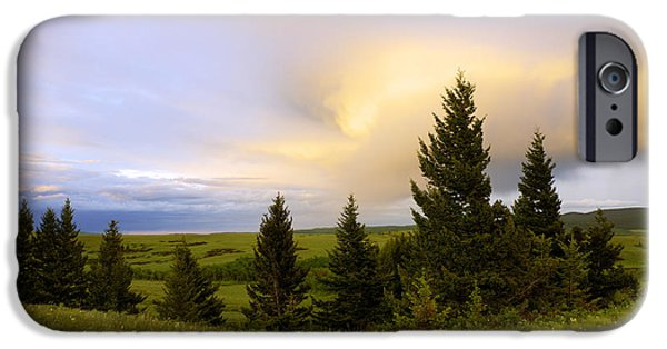 Meadow Photographs iPhone Cases - Warm the Soul iPhone Case by Chad Dutson