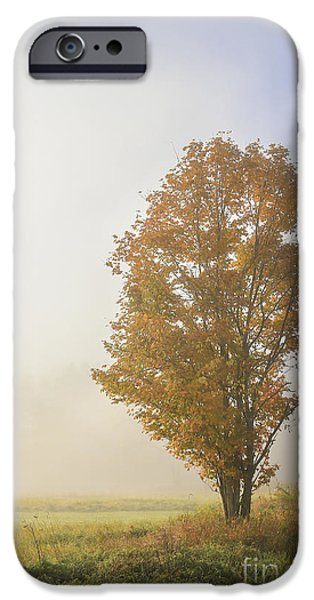 Ithaca iPhone Cases - Warmth iPhone Case by Evelina Kremsdorf