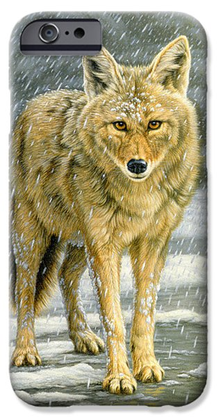 Coyote iPhone Cases - Wary Approach - coyote iPhone Case by Paul Krapf