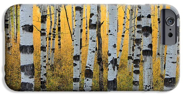 Autumn Trees iPhone Cases - Wasatch Aspens iPhone Case by Johnny Adolphson