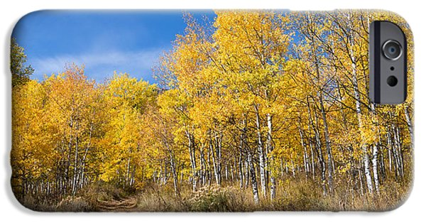 Autumn Road iPhone Cases - Wasatch Fall iPhone Case by Chad Dutson