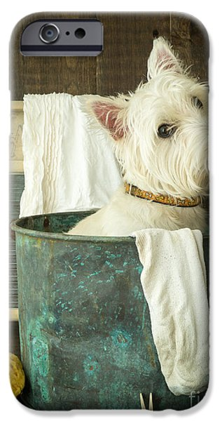 Cute Puppy Photographs iPhone Cases - Wash Day iPhone Case by Edward Fielding