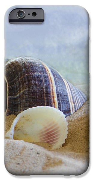 Washed Ashore iPhone Case by Betty LaRue