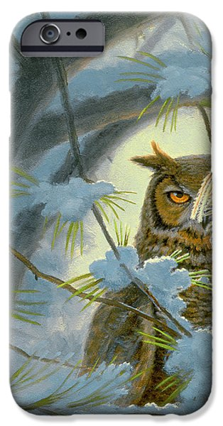 Snow iPhone Cases - Watchful Eye-Owl iPhone Case by Paul Krapf