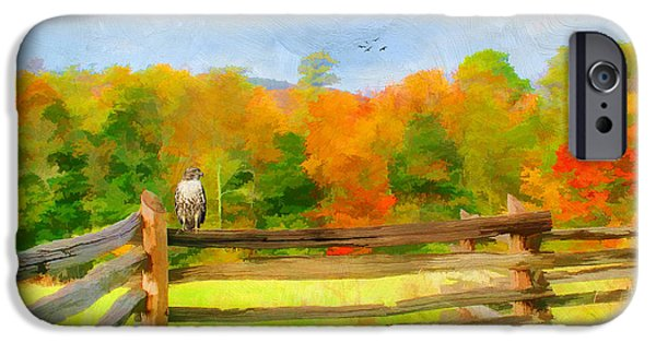 Split Rail Fence iPhone Cases - Watching Autumn iPhone Case by Darren Fisher