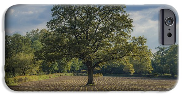 Crops Photographs iPhone Cases - Watching over the newcomers iPhone Case by Chris Fletcher
