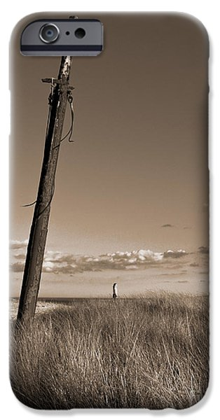 Mast iPhone Cases - Watching Over the Sea King iPhone Case by Mark Miller
