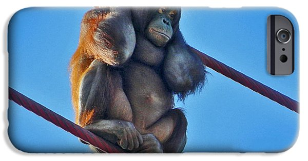 Orangutan Digital Art iPhone Cases - Watching People From The O-Line iPhone Case by Emmy Marie Vickers