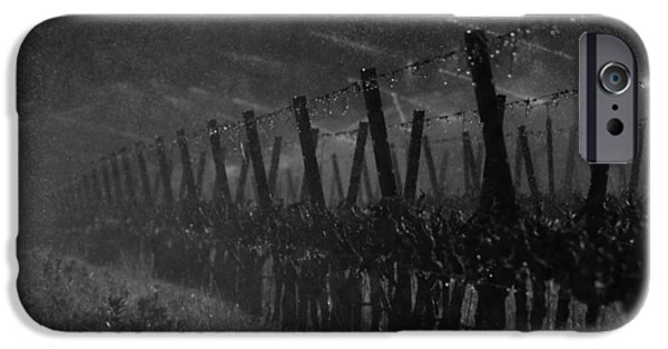 Crops iPhone Cases - Water Into Wine iPhone Case by Bill Gallagher