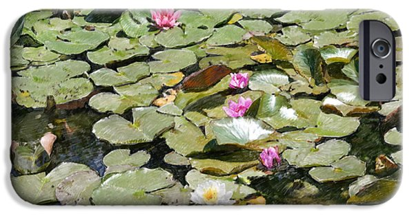 Pastel iPhone Cases - Water lilies in France iPhone Case by Dominique Amendola
