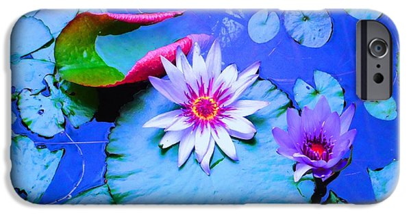 Ann Johndro-collins iPhone Cases - Water Lily I iPhone Case by Ann Johndro-Collins