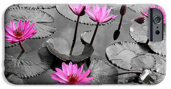 Water Colors Pyrography iPhone Cases - Water lily lotus flower and leaves iPhone Case by Thanapol Kuptanisakorn