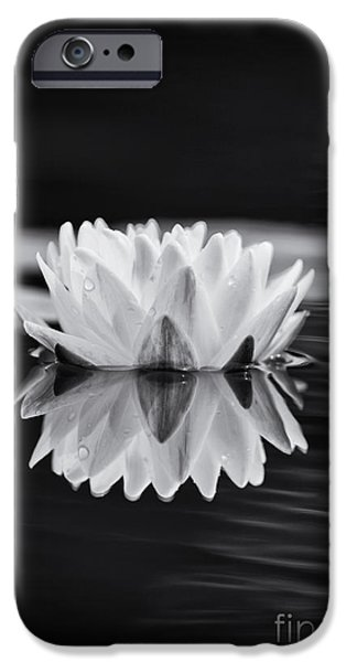 Aquatic Plants iPhone Cases - Water Lily Reflection iPhone Case by Tim Gainey
