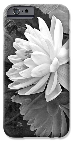 Water Lilly iPhone Cases - Water Lily Reflections in Black and White iPhone Case by Gill Billington