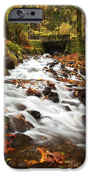 Creek iPhone Cases - Water under the Bridge iPhone Case by Mike  Dawson