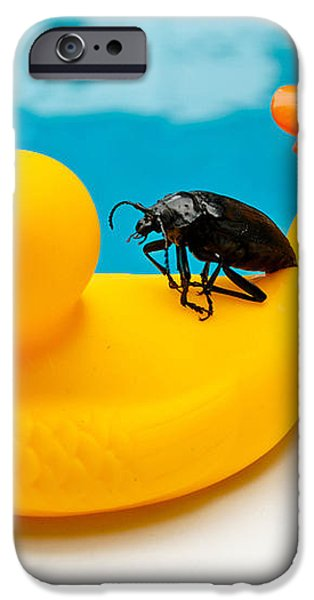 Waterbug takes Yellow Taxi iPhone Case by Amy Cicconi