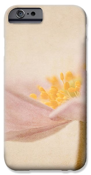 Watercolour Whispers iPhone Case by Amy Weiss
