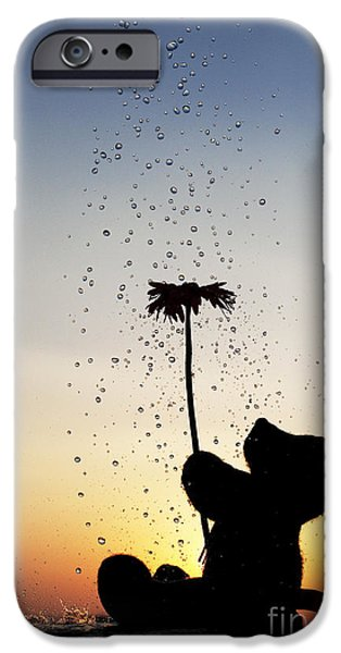 Drops Of Water iPhone Cases - Watering a flower iPhone Case by Tim Gainey