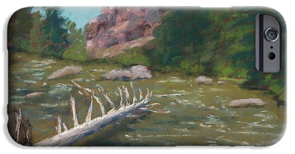 Creek Pastels iPhone Cases - Waterlogged iPhone Case by Mary Benke