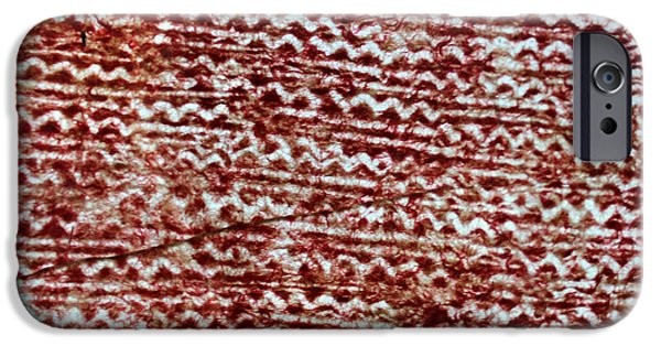 Tribal Tapestries - Textiles iPhone Cases - WaterMark 4 iPhone Case by Dalani Tanahy