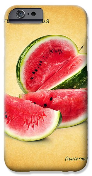Sweet Corn iPhone Cases - Watermelon iPhone Case by Mark Rogan