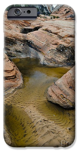 Park Scene iPhone Cases - Waterpocket In Sandstone iPhone Case by John Shaw