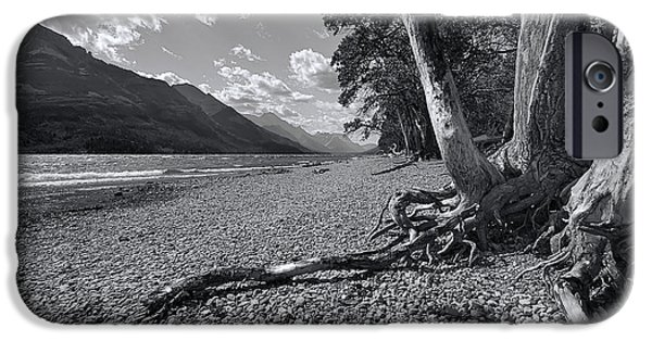 Tree Roots iPhone Cases - Waterton Lake iPhone Case by Wayne Sherriff