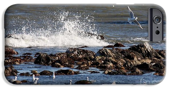 Flying Seagull iPhone Cases - Waves Wind and Whitecaps iPhone Case by John Telfer