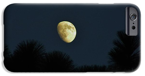 Moonscape iPhone Cases - Waxing Moon Over Florida iPhone Case by D Hackett