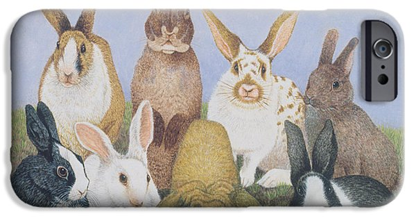 Rabbit iPhone Cases - We Are All Ears Oil On Board iPhone Case by Pat Scott