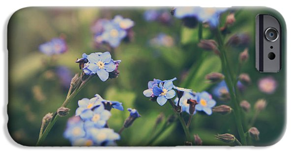 Flower Gardens Photographs iPhone Cases - We Lay With the Flowers iPhone Case by Laurie Search