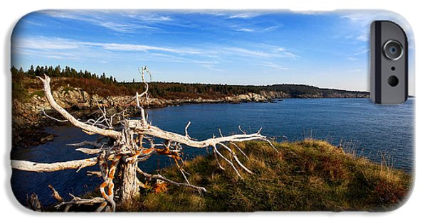 Gulf Of Maine iPhone Cases - Weathered Coast iPhone Case by Bill Caldwell -        ABeautifulSky Photography