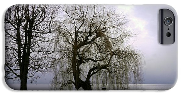 Willow Lake iPhone Cases - Weeping Willow By Lake Geneva iPhone Case by Adam Sylvester