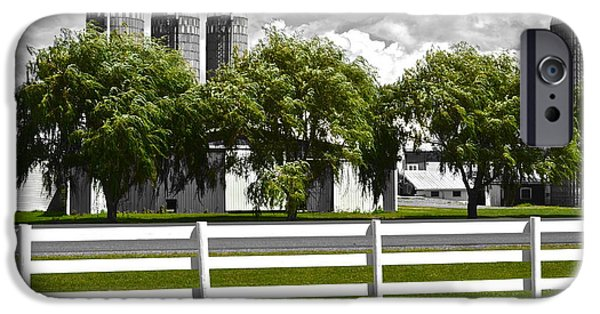 Weeping Willow Tree iPhone Cases - Weeping Willow Green iPhone Case by Frozen in Time Fine Art Photography