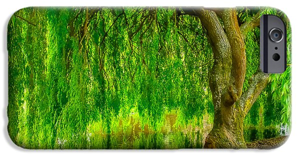 Recently Sold -  - Willow Lake iPhone Cases - Weeping Willow Tree iPhone Case by Andy Jackson