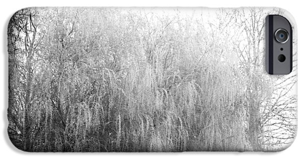 Willow Lake iPhone Cases - Weeping Willows by The lake iPhone Case by AdSpice Studios