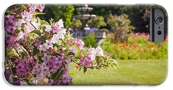 Garden Flowers Photographs iPhone Cases - Weigela in June garden iPhone Case by Elena Elisseeva
