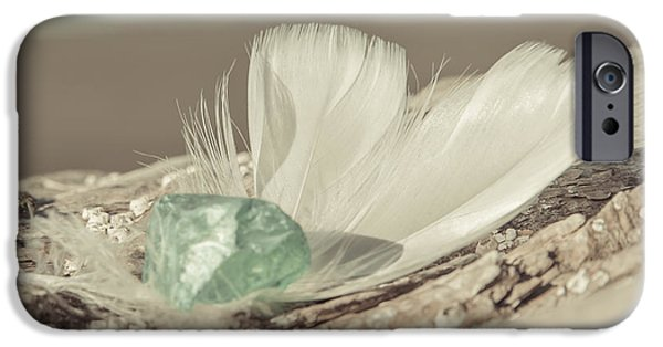 Glass Wall iPhone Cases - Weighted Feathers iPhone Case by Lucid Mood